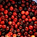 Vegan Thanksgiving:  Pomegranate, Chia Seed, Cranberry Sauce