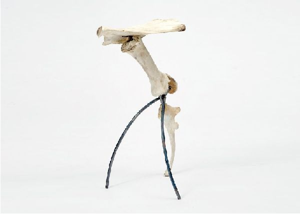 Cow bone stool