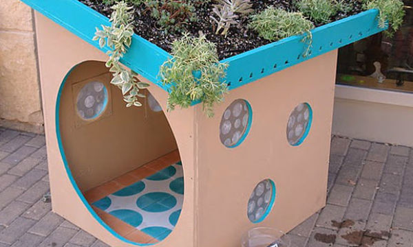 The recycled dog shed