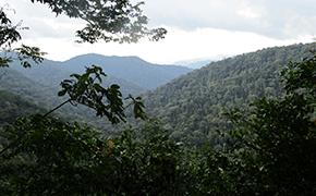 Parque_Nacional_Monte_Alen