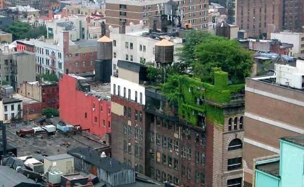 Green_City-ecoinventos