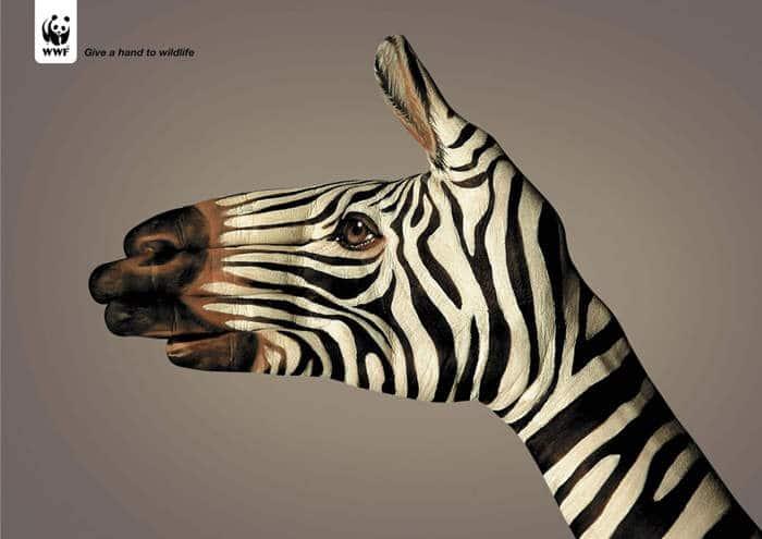 Dale la mano a la fauna2
