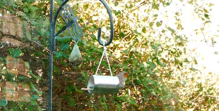 Como hacer un comedero de pájaros con una lata