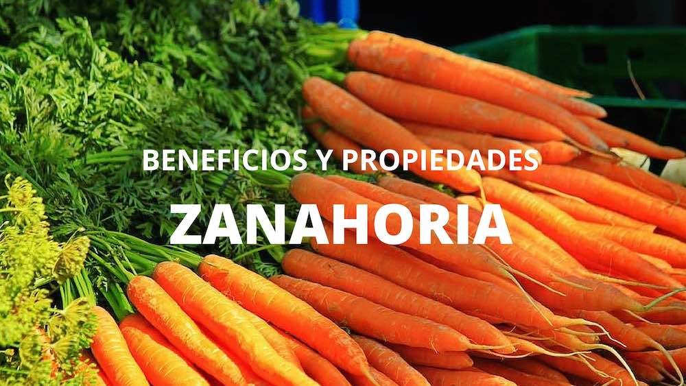 Zanahoria propiedades