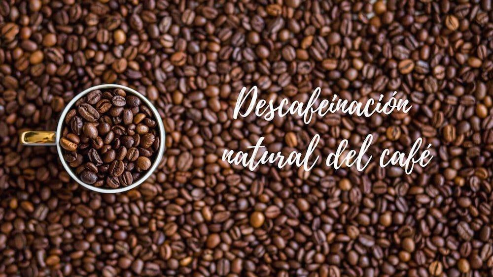 descafeinizacion-del-cafe