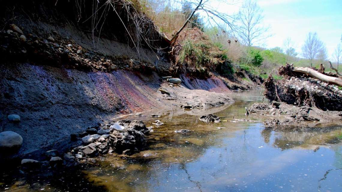Another look at severe erosion of the riverbank abutting the Old East Pond. Photo by Pam Richart, Eco-Justice Collaborative. April 2016