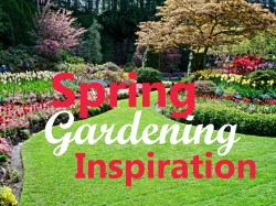 Small Of Backyard Gardening Blog