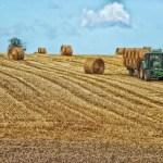 Vertical-Farming: Der Bauernhof im Hochhaus