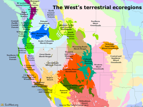 Ecoregions of the American West
