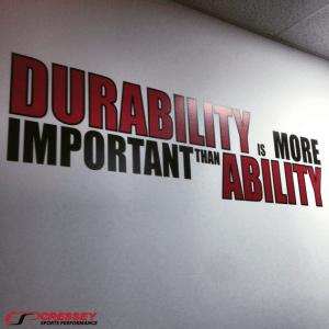 durability-300x300-2