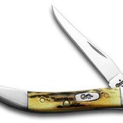 Case Xx Genuine Sambar Stag Tiny Toothpick Pocket Knife Knives