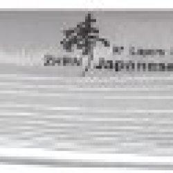 Zhen Japanese Vg-10 Damascus Steel Dragon Gyuto Chef Knife, 10.5-Inch