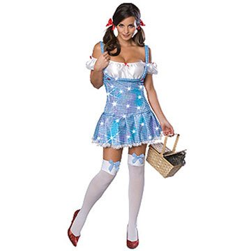Wizard Of Oz Secret Wishes Sexy Dorothy Costume