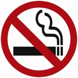 No Smoking Symbol Window Sign Self Adhesive. 100 X 100Mm.