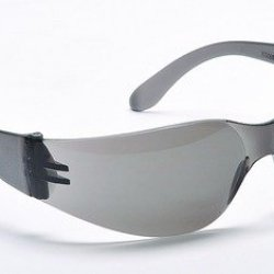 Storm Safety Glasses Gray Lens Case Pack 300