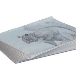 Sax Plain White Newsprint Newspaper - 8 1/2 X 11 Inches - Pack Of 500 - White