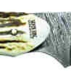 Silver Stag Damascus Steel Gut Twist