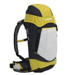Wenger Onex Patagonia Backpack (20L, Yellow)