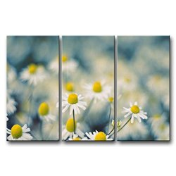 3 Panel Wall Art Painting Chamomille With Yellow Stamen Pictures Prints On Canvas Flower The Picture Decor Oil For Home Modern Decoration Print For Kids Room