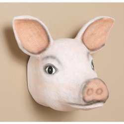 Papermache Pig Head