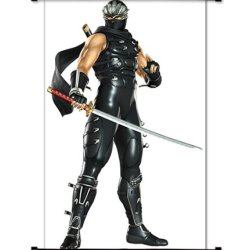 "Ninja Gaiden Videogame Fabric Wall Scroll Poster (32"" X 52"") Inches"