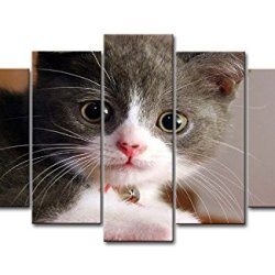 5 Panel Wall Art Painting Little Cats Happy Desktop Angels Prints On Canvas The Picture Animal Pictures Oil For Home Modern Decoration Print Decor