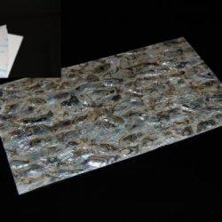 Green Abalone Adhesive Veneer Sheet