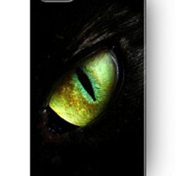 Sprawl New Vintage Design Personalized Hard Plastic Snap On Slim Fit Iphone 4 4S Case Devil Eye