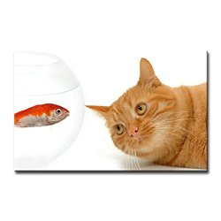 Wall Art Painting Cat Watch Small Red Fish In Aquarium Pictures Prints On Canvas Animal The Picture Decor Oil For Home Modern Decoration Print
