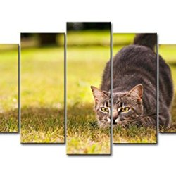 5 Piece Wall Art Painting Hunting Cat In The Grass Prints On Canvas The Picture Animal Pictures Oil For Home Modern Decoration Print Decor For Bedroom
