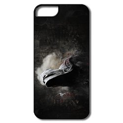 Digital Art Pc Nice Case For Iphone 5/5S