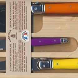 Laguiole Knife Set-Handles Are Yellow,Purple, Orange