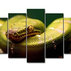5 Panel Wall Art Painting A Green Snake Prints On Canvas The Picture Animal Pictures Oil For Home Modern Decoration Print Decor