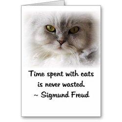 Freud'S Cat Cards