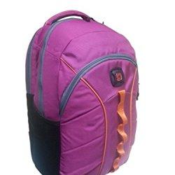 "Swissgear 16"" Laptop Backpack, The Sun, Magenta/Orange (Hot Pink)"