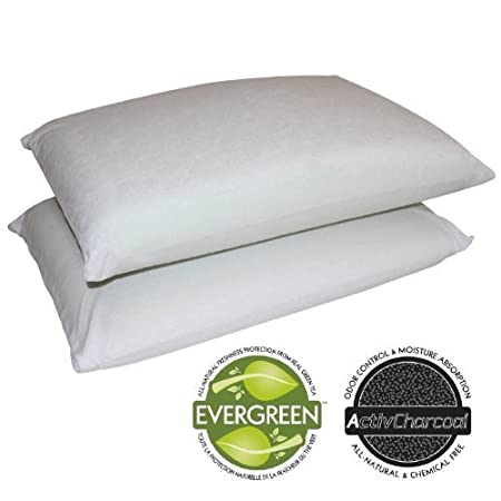 The Sleep Master traditional memory foam 2-pack pillow set provides a soft and supportive sleep for your head and neck. Memory foam cradles you while you sleep allowing you get a full nights rest. Each pillow comes with a removable and washable poly-...