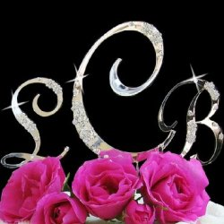 Wedding Combo Silver French Flower Swarovski Crystal Accent Monogram Cake Topper 3Pc Set