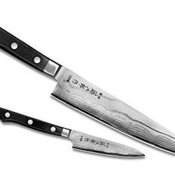 Tojiro Dp Damascus 2-Piece Starter Knife Set