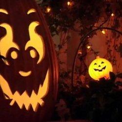 Diy Halloween 101