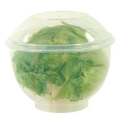 Fox Run Lettuce Crisper