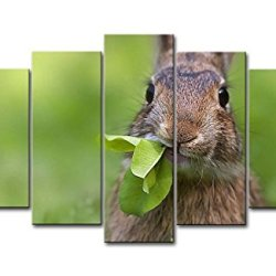 Green 5 Piece Wall Art Painting Rabbit Chewing The Leaves Pictures Prints On Canvas Animal The Picture Decor Oil For Home Modern Decoration Print For Kids Room