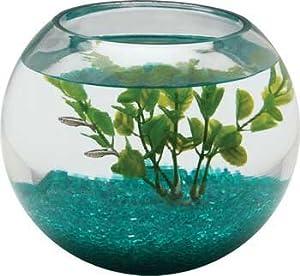 pet supplies fish aquatic pets aquariums fish bowls aquariums