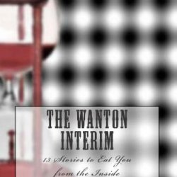 The Wanton Interim: 13 Stories To Eat You From The Inside