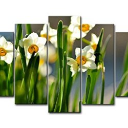 5 Piece Wall Art Painting White And Orange Daffodils In The Field Prints On Canvas The Picture Flower Pictures Oil For Home Modern Decoration Print Decor For Bedroom