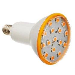 6 W E14 X5050Smd 25 450-500 Lm 3000 K Of Warm White Led Bulb Sizes (200-240 - V)