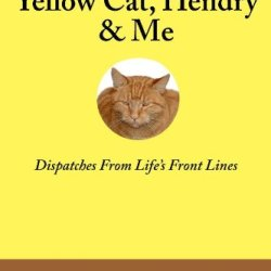 Yellow Cat, Hendry & Me: Dispatches From Life'S Front Lines