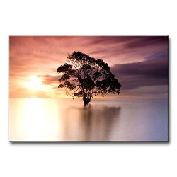 Wall Art Painting Tree In Nudgee Beach Australia At Dusk Prints On Canvas The Picture Landscape Pictures Oil For Home Modern Decoration Print Decor For Kitchen