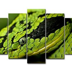 Green 5 Piece Wall Art Painting Yellow And Black Snake Prints On Canvas The Picture Animal Pictures Oil For Home Modern Decoration Print Decor For Bedroom