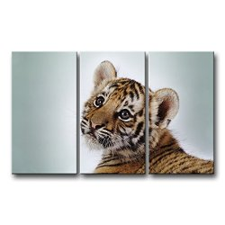 3 Piece Wall Art Painting Cute Tiger Cub Pictures Prints On Canvas Animal The Picture Decor Oil For Home Modern Decoration Print