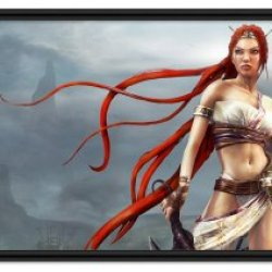 """Heavenly Sword Game Fabric Wall Scroll Poster (32"""" X 18"""") Inches"""